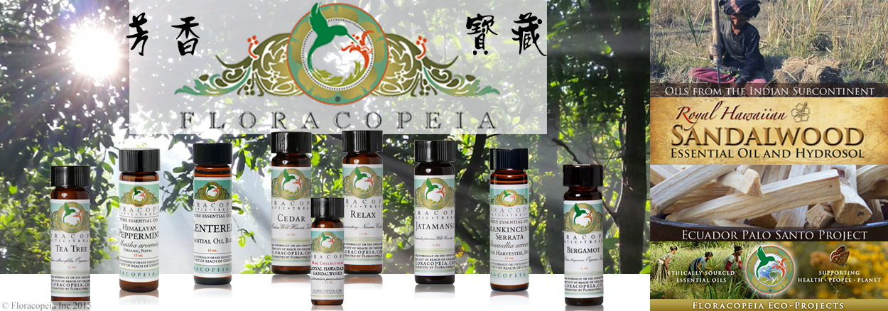 floracopeia-banner-rongwei